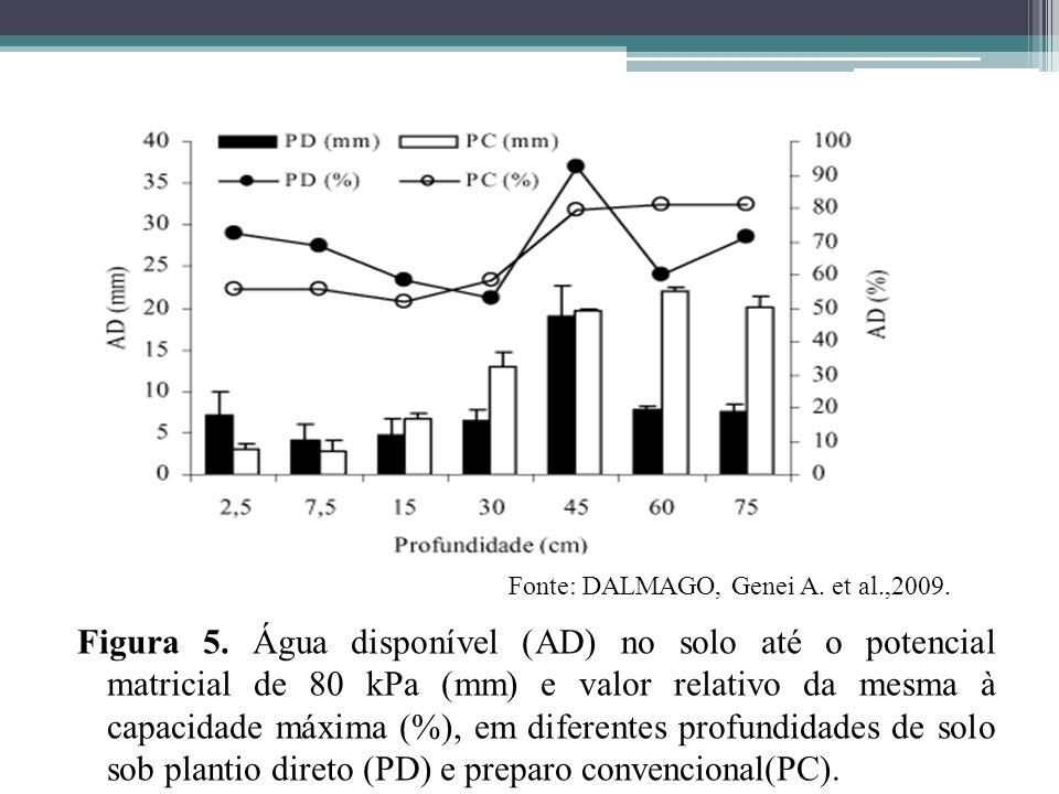 Figura 5. Água disponível (AD) no solo até o potencial matricial de 80 kPa (mm) e valor relativo da mesma à capacidade máxima (%), em diferentes profu