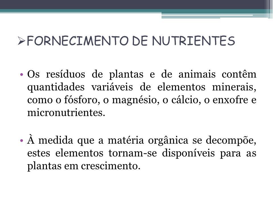 FORNECIMENTO DE NUTRIENTES Os resíduos de plantas e de animais contêm quantidades variáveis de elementos minerais, como o fósforo, o magnésio, o cálci