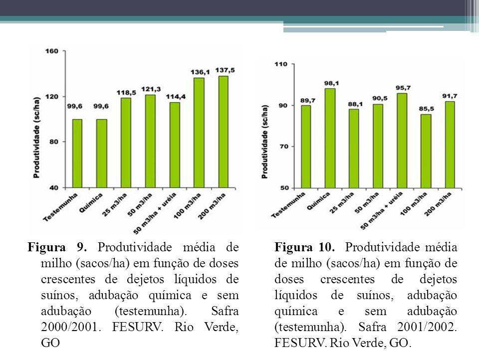 Figura 9. Produtividade média de milho (sacos/ha) em função de doses crescentes de dejetos líquidos de suínos, adubação química e sem adubação (testem