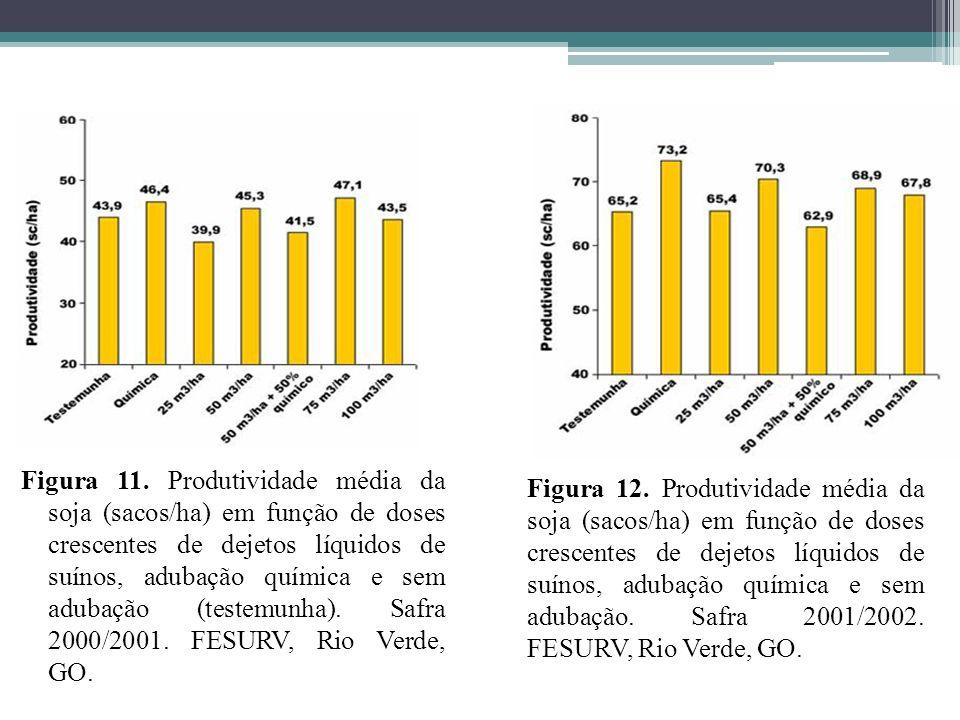 Figura 11. Produtividade média da soja (sacos/ha) em função de doses crescentes de dejetos líquidos de suínos, adubação química e sem adubação (testem