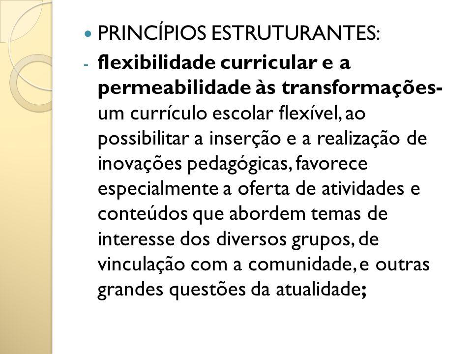PRINCÍPIOS ESTRUTURANTES: - flexibilidade curricular e a permeabilidade às transformações- um currículo escolar flexível, ao possibilitar a inserção e