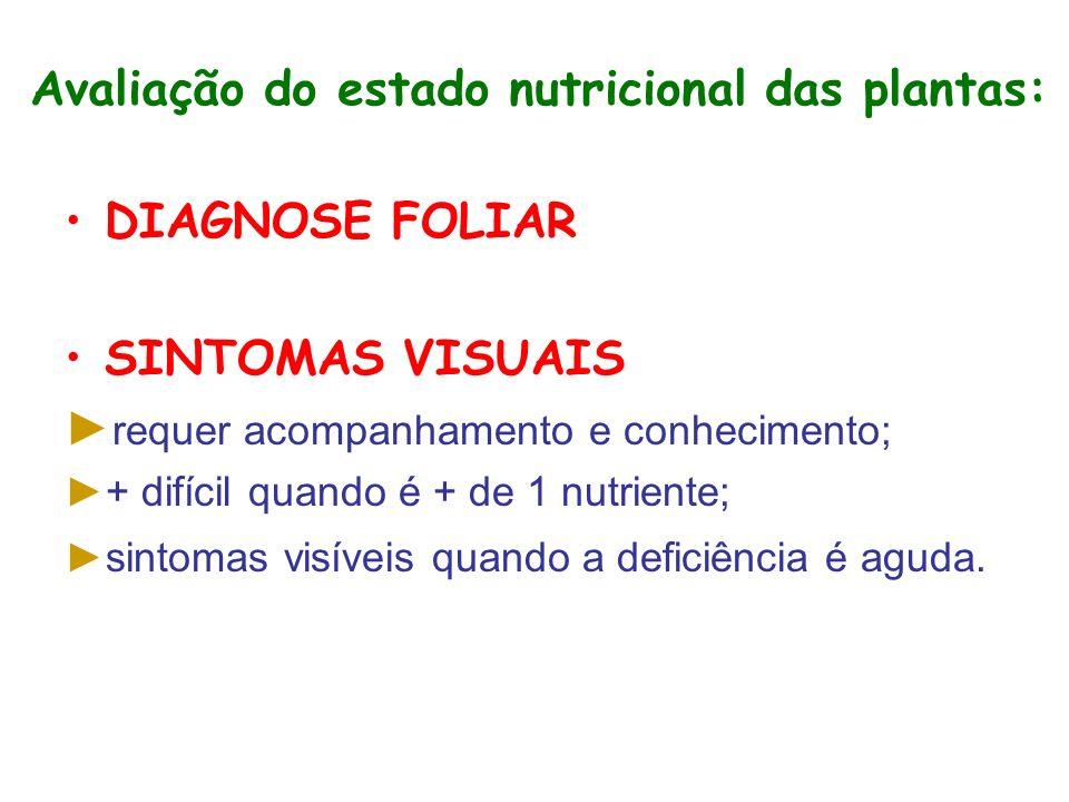 Avaliação do estado nutricional das plantas: DIAGNOSE FOLIAR SINTOMAS VISUAIS requer acompanhamento e conhecimento; + difícil quando é + de 1 nutriente; sintomas visíveis quando a deficiência é aguda.