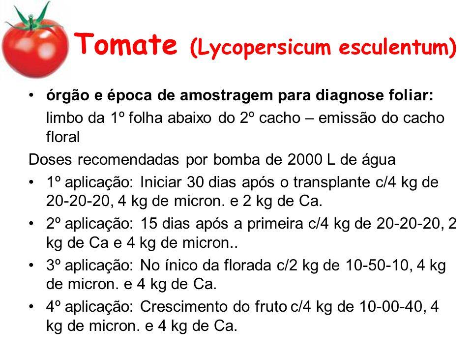 Tomate (Lycopersicum esculentum) órgão e época de amostragem para diagnose foliar: limbo da 1º folha abaixo do 2º cacho – emissão do cacho floral Doses recomendadas por bomba de 2000 L de água 1º aplicação: Iniciar 30 dias após o transplante c/4 kg de 20-20-20, 4 kg de micron.