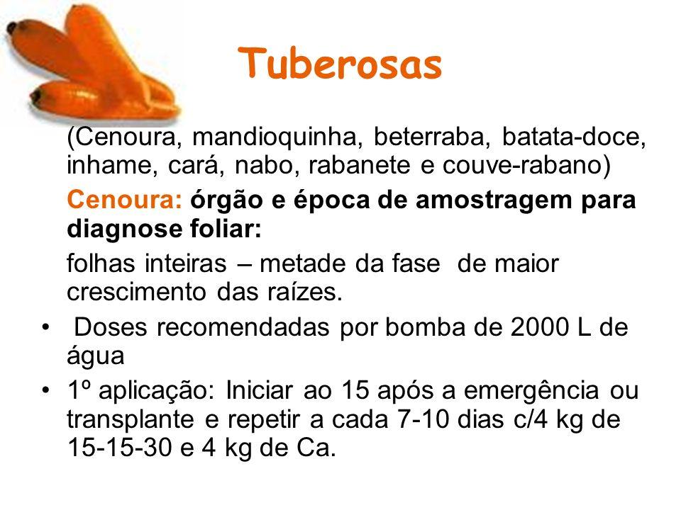 Tuberosas (Cenoura, mandioquinha, beterraba, batata-doce, inhame, cará, nabo, rabanete e couve-rabano) Cenoura: órgão e época de amostragem para diagn