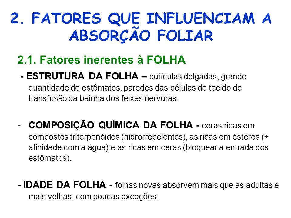 2.FATORES QUE INFLUENCIAM A ABSORÇÃO FOLIAR 2.1.