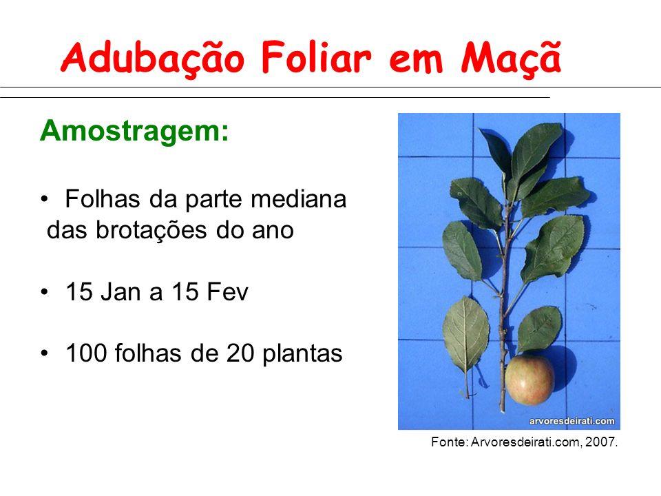 Adubação Foliar em Maçã Amostragem: Folhas da parte mediana das brotações do ano 15 Jan a 15 Fev 100 folhas de 20 plantas Fonte: Arvoresdeirati.com, 2007.