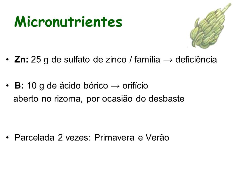Micronutrientes Zn: 25 g de sulfato de zinco / família deficiência B: 10 g de ácido bórico orifício aberto no rizoma, por ocasião do desbaste Parcelada 2 vezes: Primavera e Verão