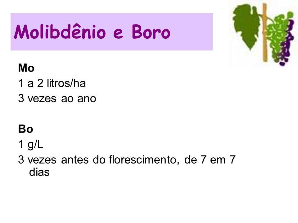 Mo 1 a 2 litros/ha 3 vezes ao ano Bo 1 g/L 3 vezes antes do florescimento, de 7 em 7 dias Molibdênio e Boro
