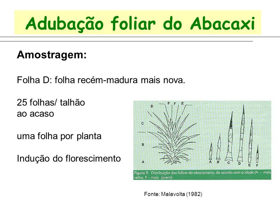 Adubação foliar do Abacaxi Amostragem: Folha D: folha recém-madura mais nova. 25 folhas/ talhão ao acaso uma folha por planta Indução do florescimento