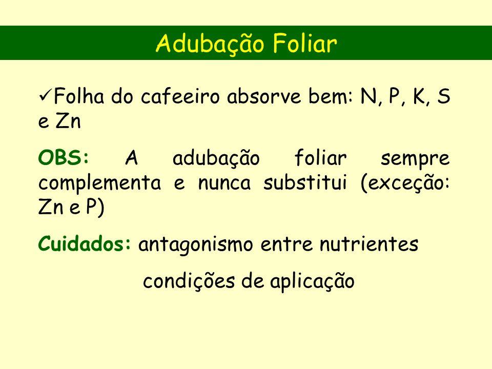 Folha do cafeeiro absorve bem: N, P, K, S e Zn OBS: A adubação foliar sempre complementa e nunca substitui (exceção: Zn e P) Cuidados: antagonismo entre nutrientes condições de aplicação Adubação Foliar