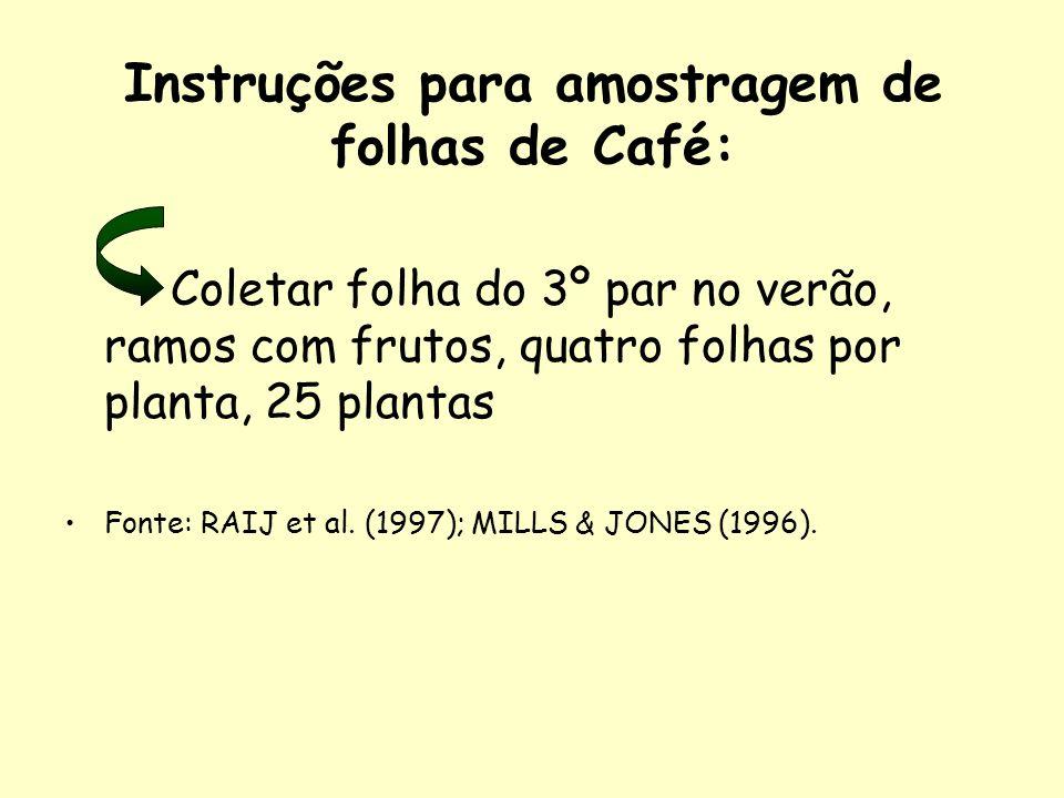 Instruções para amostragem de folhas de Café: Coletar folha do 3º par no verão, ramos com frutos, quatro folhas por planta, 25 plantas Fonte: RAIJ et al.