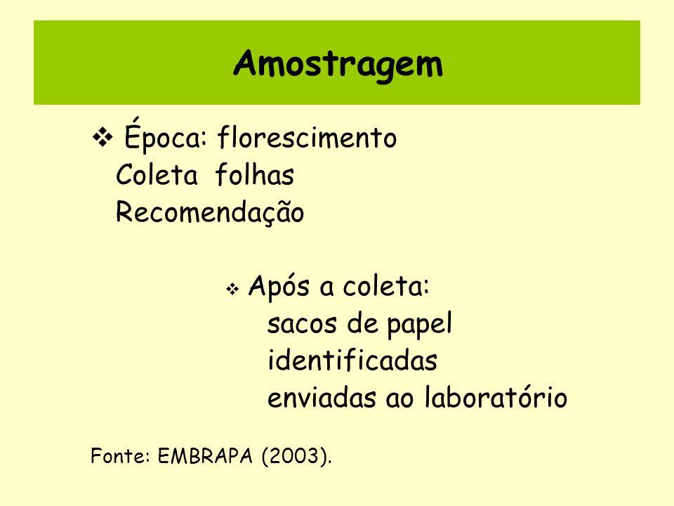 Amostragem Época: florescimento Coleta folhas Recomendação Após a coleta: sacos de papel identificadas enviadas ao laboratório Fonte: EMBRAPA (2003).