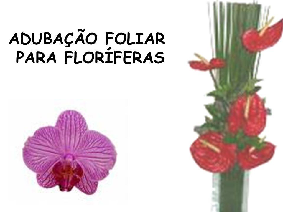 ADUBAÇÃO FOLIAR PARA FLORÍFERAS