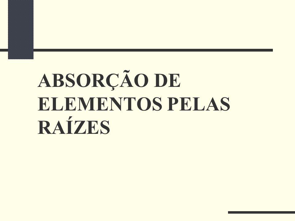 ABSORÇÃO DE ELEMENTOS PELAS RAÍZES