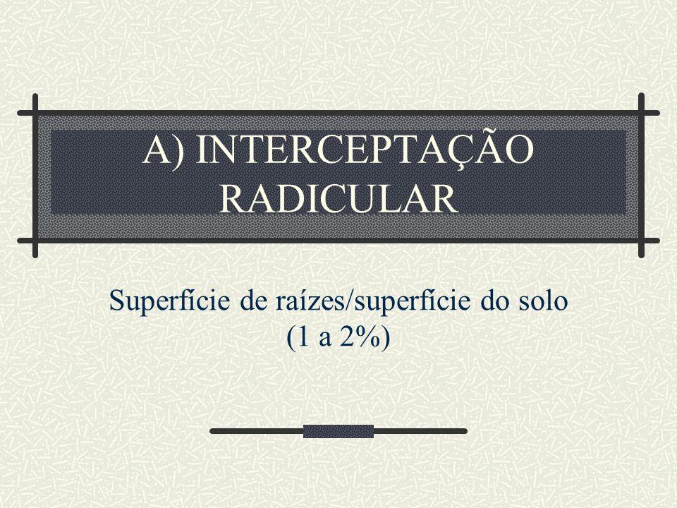 A) INTERCEPTAÇÃO RADICULAR Superfície de raízes/superfície do solo (1 a 2%)