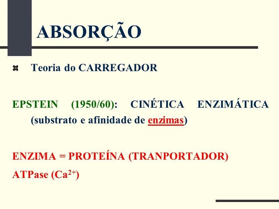 ABSORÇÃO Teoria do CARREGADOR EPSTEIN (1950/60): CINÉTICA ENZIMÁTICA (substrato e afinidade de enzimas) ENZIMA = PROTEÍNA (TRANPORTADOR) ATPase (Ca 2+