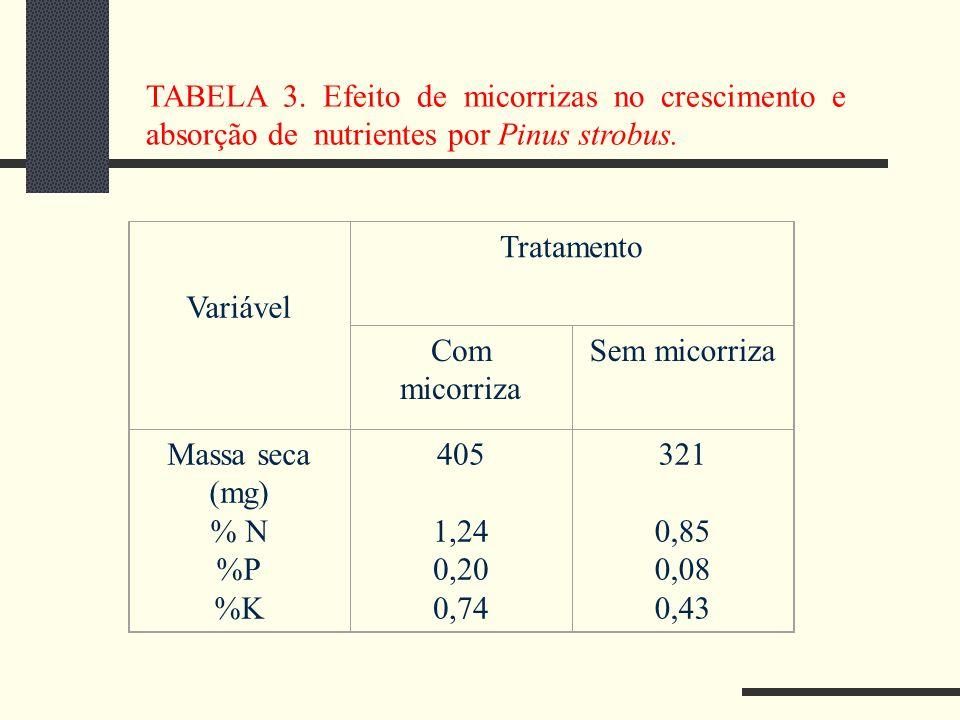 Variável Tratamento Com micorriza Sem micorriza Massa seca (mg) % N %P %K 405 1,24 0,20 0,74 321 0,85 0,08 0,43 TABELA 3. Efeito de micorrizas no cres