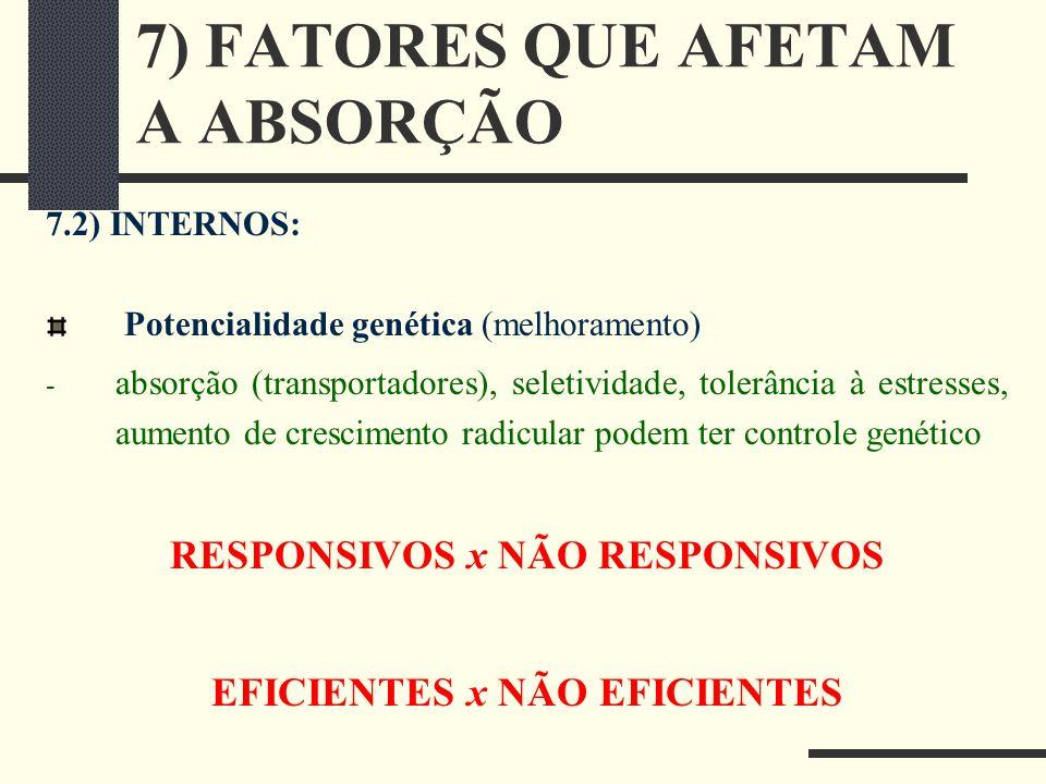7) FATORES QUE AFETAM A ABSORÇÃO 7.2) INTERNOS: Potencialidade genética (melhoramento) - absorção (transportadores), seletividade, tolerância à estres