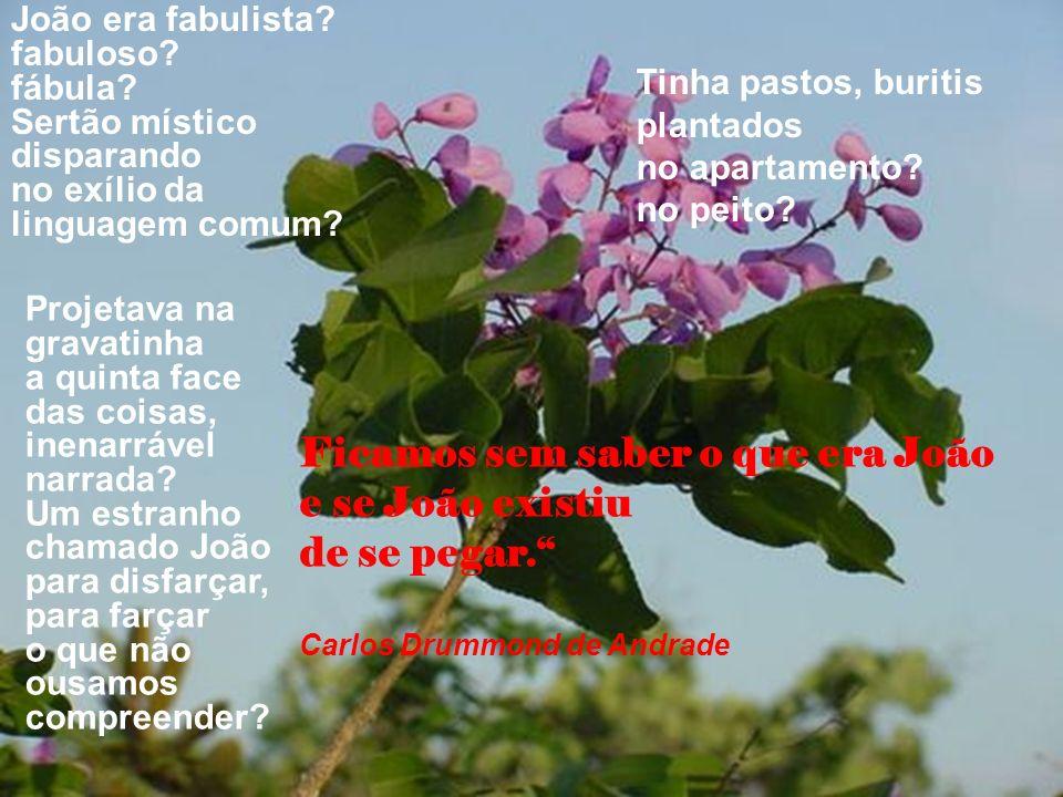 João era fabulista.fabuloso. fábula. Sertão místico disparando no exílio da linguagem comum.