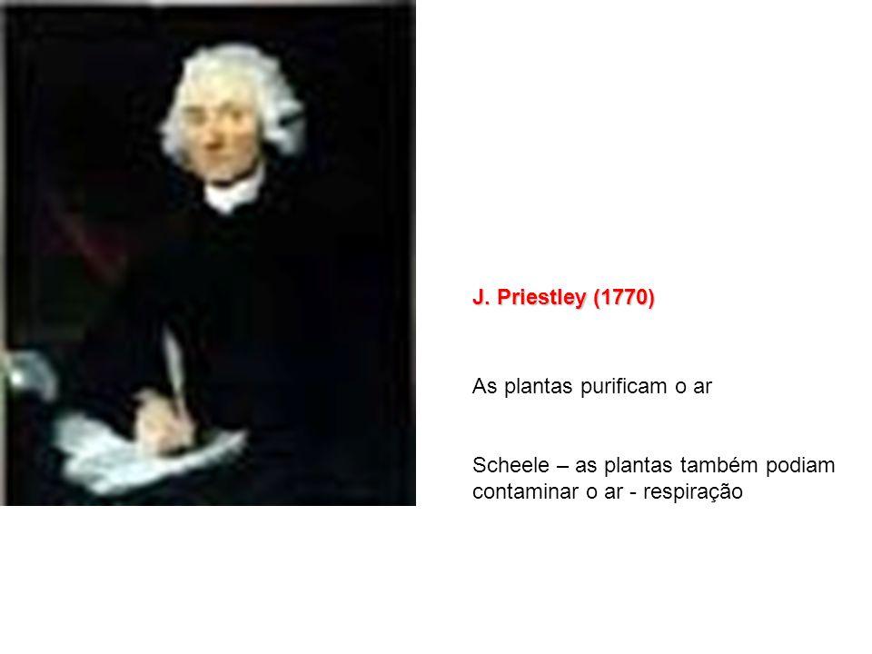 Immanuel Kant (1724 – 1804) O Iluminismo representa a saída dos seres humanos de uma tutelagem que estes mesmos se impuseram. Tutelados são aqueles qu