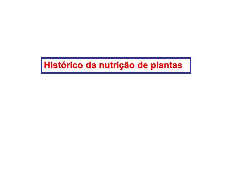 Porque estudar Nutrição de Plantas? O homem come planta ou planta transformada, então, somente alimentando a planta é possível alimentar o homem. O qu