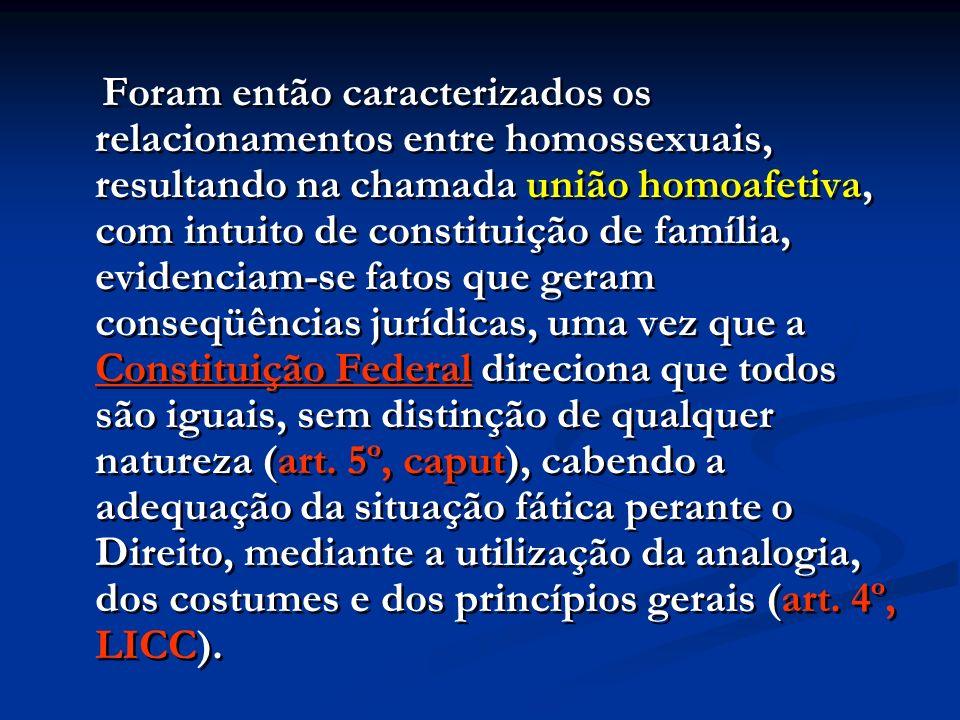 Foram então caracterizados os relacionamentos entre homossexuais, resultando na chamada união homoafetiva, com intuito de constituição de família, evi