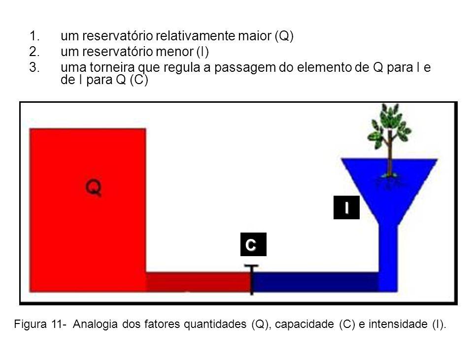 1.um reservatório relativamente maior (Q) 2.um reservatório menor (I) 3.uma torneira que regula a passagem do elemento de Q para I e de I para Q (C) F