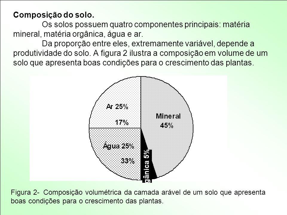 Composição do solo. Os solos possuem quatro componentes principais: matéria mineral, matéria orgânica, água e ar. Da proporção entre eles, extremament