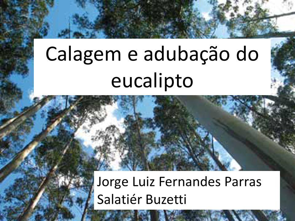 Calagem e adubação do eucalipto Jorge Luiz Fernandes Parras Salatiér Buzetti