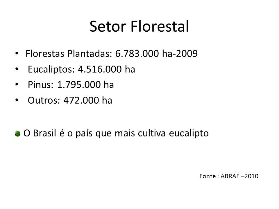 Setor Florestal Florestas Plantadas: 6.783.000 ha-2009 Eucaliptos: 4.516.000 ha Pinus: 1.795.000 ha Outros: 472.000 ha O Brasil é o país que mais cult