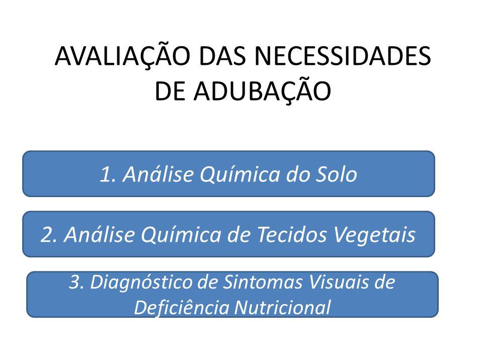 AVALIAÇÃO DAS NECESSIDADES DE ADUBAÇÃO 1. Análise Química do Solo 2. Análise Química de Tecidos Vegetais 3. Diagnóstico de Sintomas Visuais de Deficiê