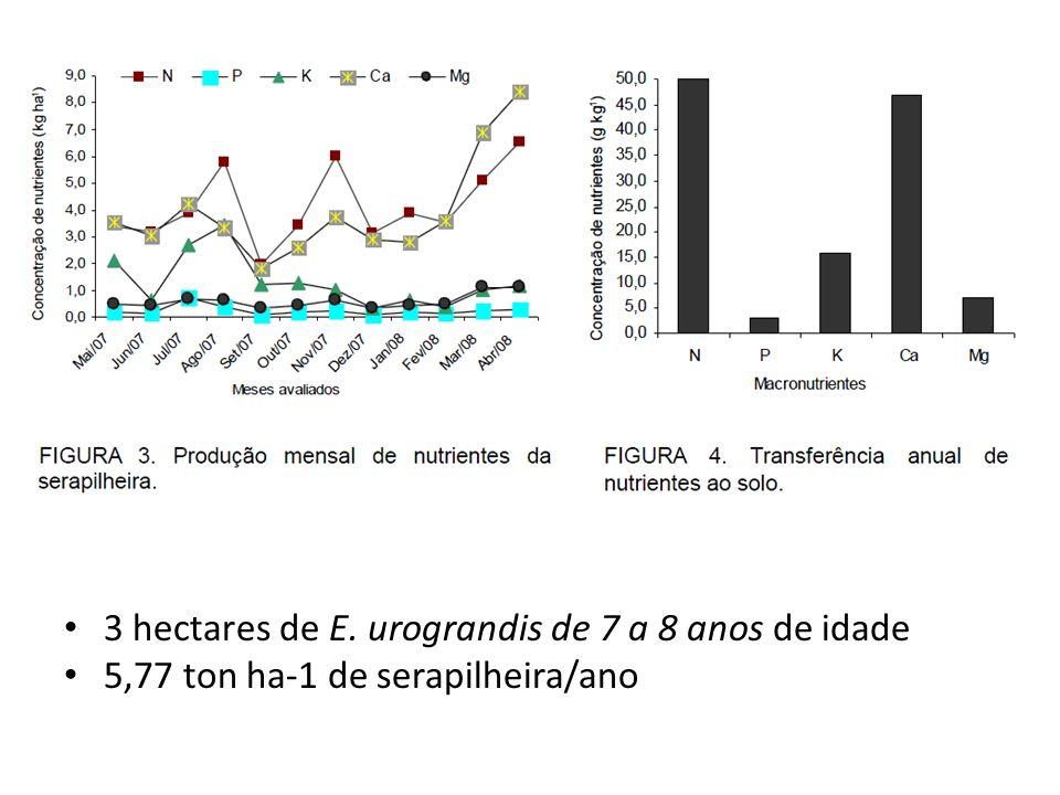 3 hectares de E. urograndis de 7 a 8 anos de idade 5,77 ton ha-1 de serapilheira/ano