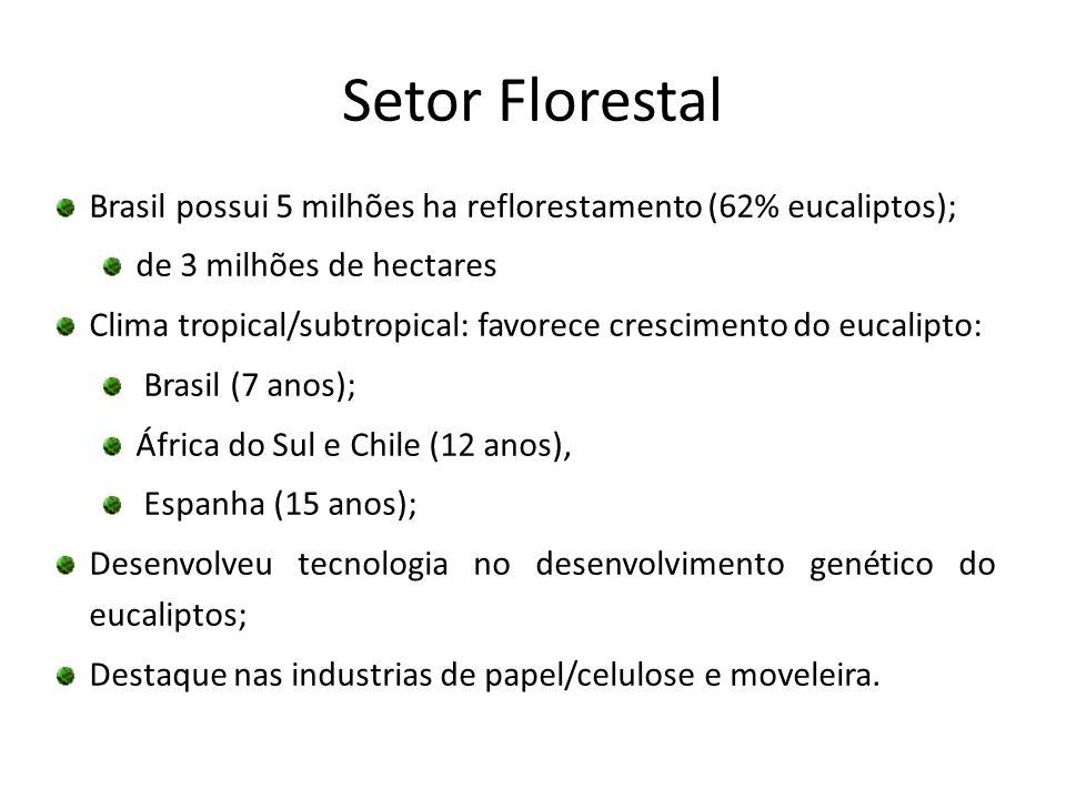 Setor Florestal Brasil possui 5 milhões ha reflorestamento (62% eucaliptos); de 3 milhões de hectares Clima tropical/subtropical: favorece crescimento
