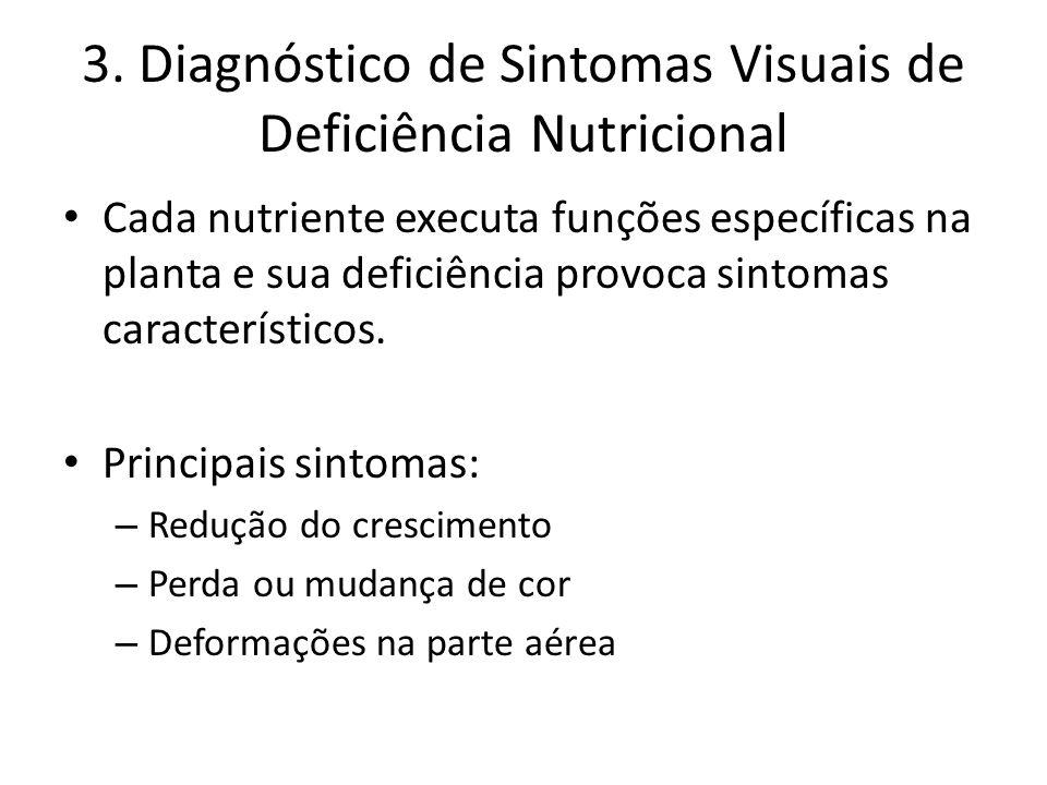 3. Diagnóstico de Sintomas Visuais de Deficiência Nutricional Cada nutriente executa funções específicas na planta e sua deficiência provoca sintomas