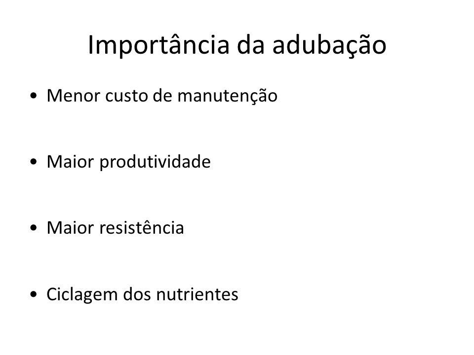 Importância da adubação Menor custo de manutenção Maior produtividade Maior resistência Ciclagem dos nutrientes
