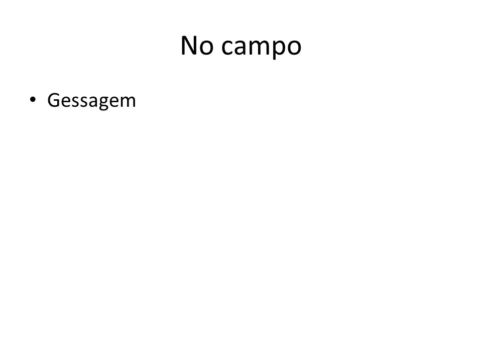 No campo Gessagem