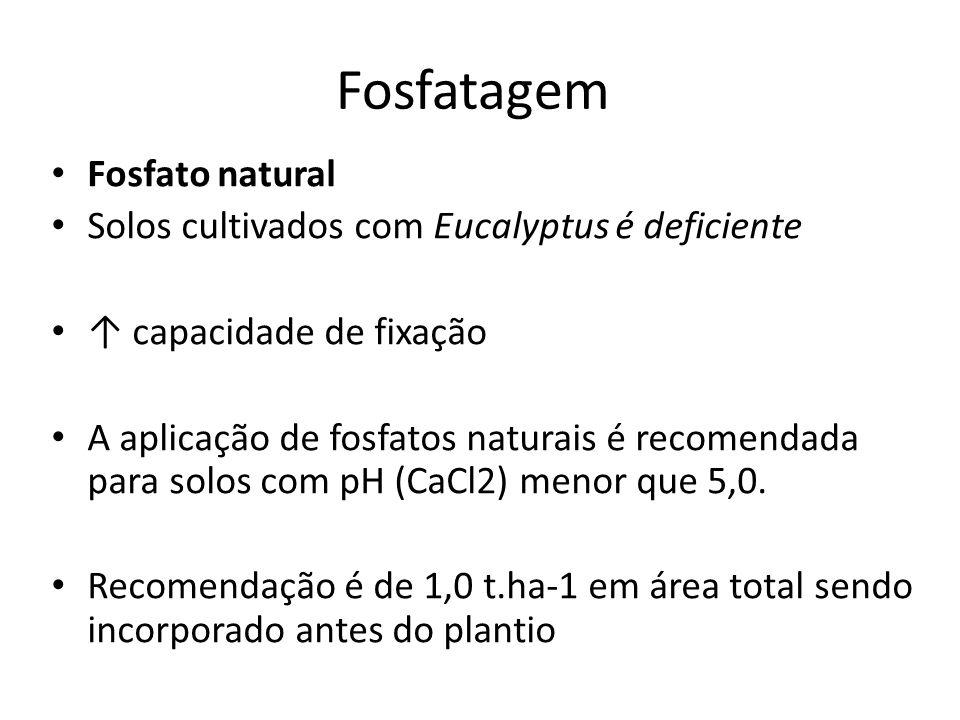 Fosfatagem Fosfato natural Solos cultivados com Eucalyptus é deficiente capacidade de fixação A aplicação de fosfatos naturais é recomendada para solo