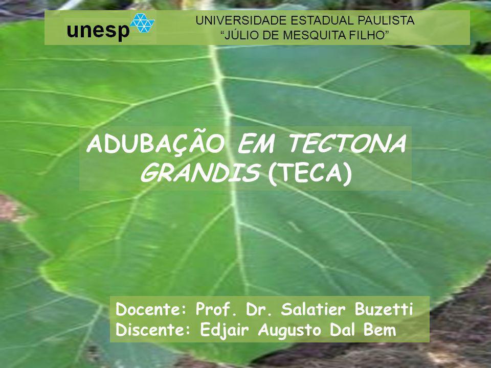 ADUBAÇÃO EM TECTONA GRANDIS (TECA) UNIVERSIDADE ESTADUAL PAULISTA JÚLIO DE MESQUITA FILHO Docente: Prof.