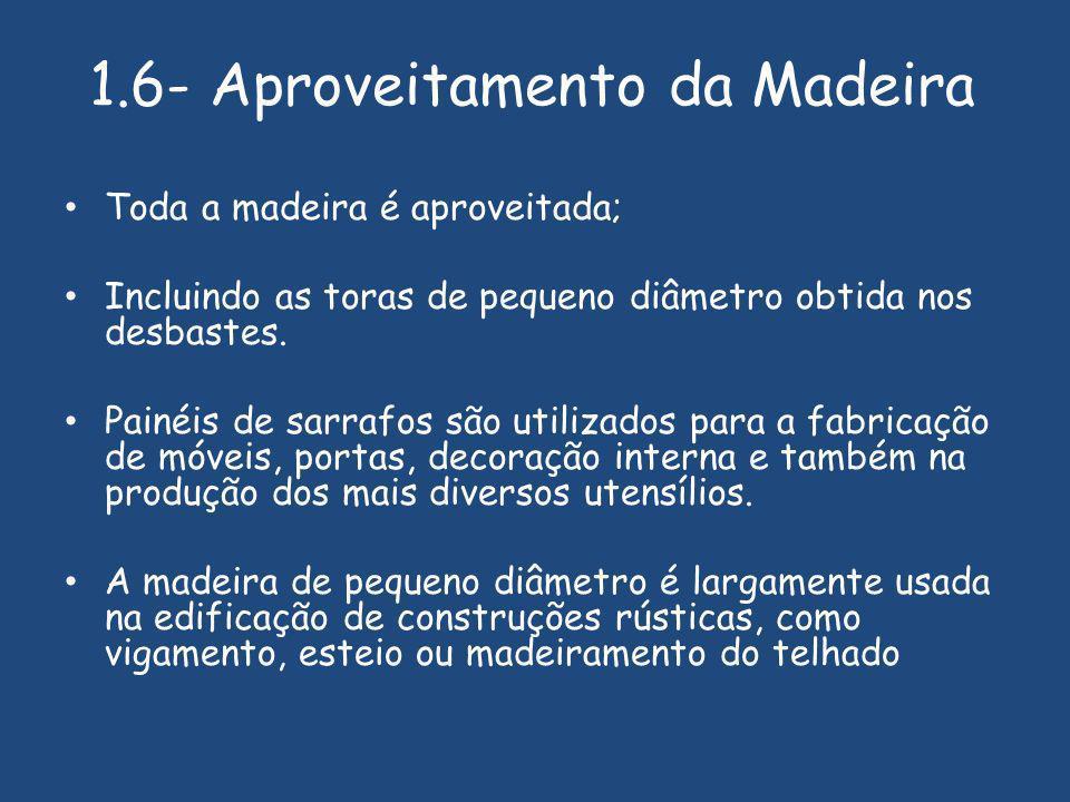 1.6- Aproveitamento da Madeira Toda a madeira é aproveitada; Incluindo as toras de pequeno diâmetro obtida nos desbastes.