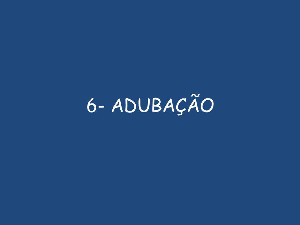 6- ADUBAÇÃO
