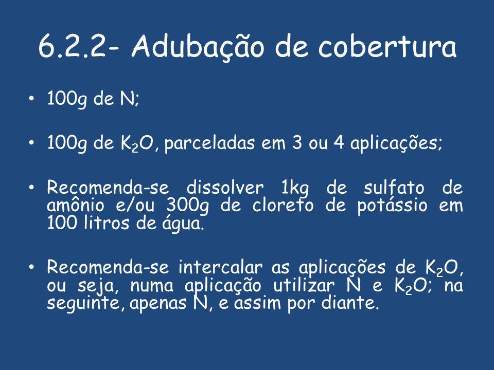 6.2.2- Adubação de cobertura 100g de N; 100g de K 2 O, parceladas em 3 ou 4 aplicações; Recomenda-se dissolver 1kg de sulfato de amônio e/ou 300g de cloreto de potássio em 100 litros de água.