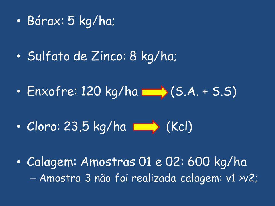 Bórax: 5 kg/ha; Sulfato de Zinco: 8 kg/ha; Enxofre: 120 kg/ha (S.A.