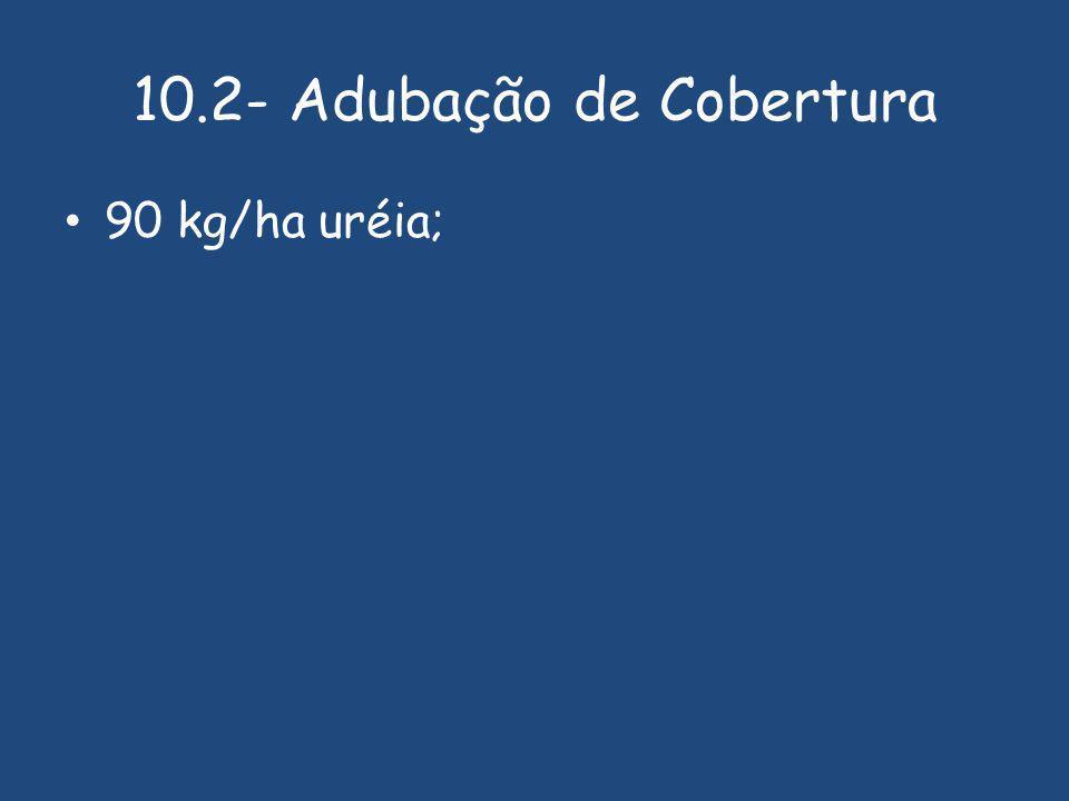 10.2- Adubação de Cobertura 90 kg/ha uréia;