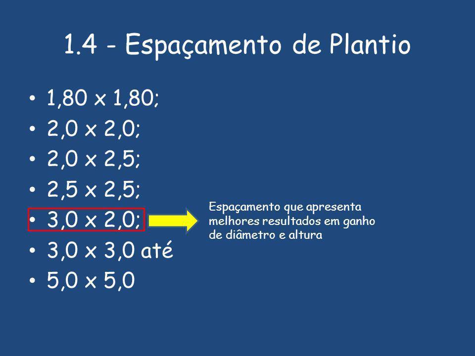 1.4 - Espaçamento de Plantio 1,80 x 1,80; 2,0 x 2,0; 2,0 x 2,5; 2,5 x 2,5; 3,0 x 2,0; 3,0 x 3,0 até 5,0 x 5,0 Espaçamento que apresenta melhores resultados em ganho de diâmetro e altura