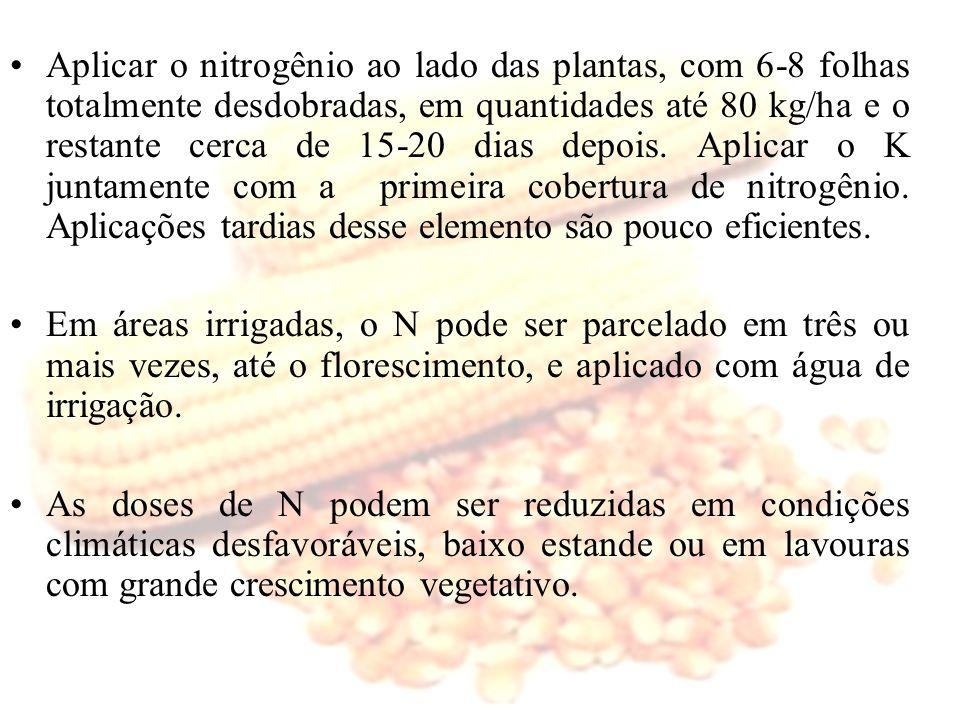 Aplicar o nitrogênio ao lado das plantas, com 6-8 folhas totalmente desdobradas, em quantidades até 80 kg/ha e o restante cerca de 15-20 dias depois.