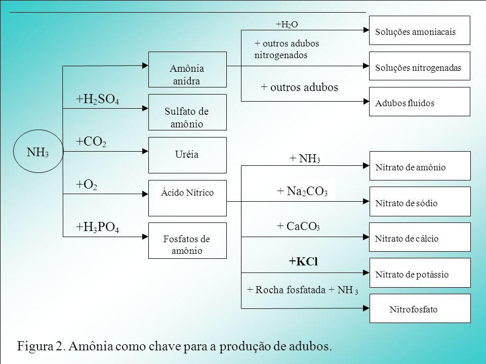 Ácido Nitrico NH 3 Amônia anidra Sulfato de amônio Uréia Fosfatos de amônio Adubos fluidos Nitrato de sódio Nitrato de amônio Nitrato de cálcio Nitrat
