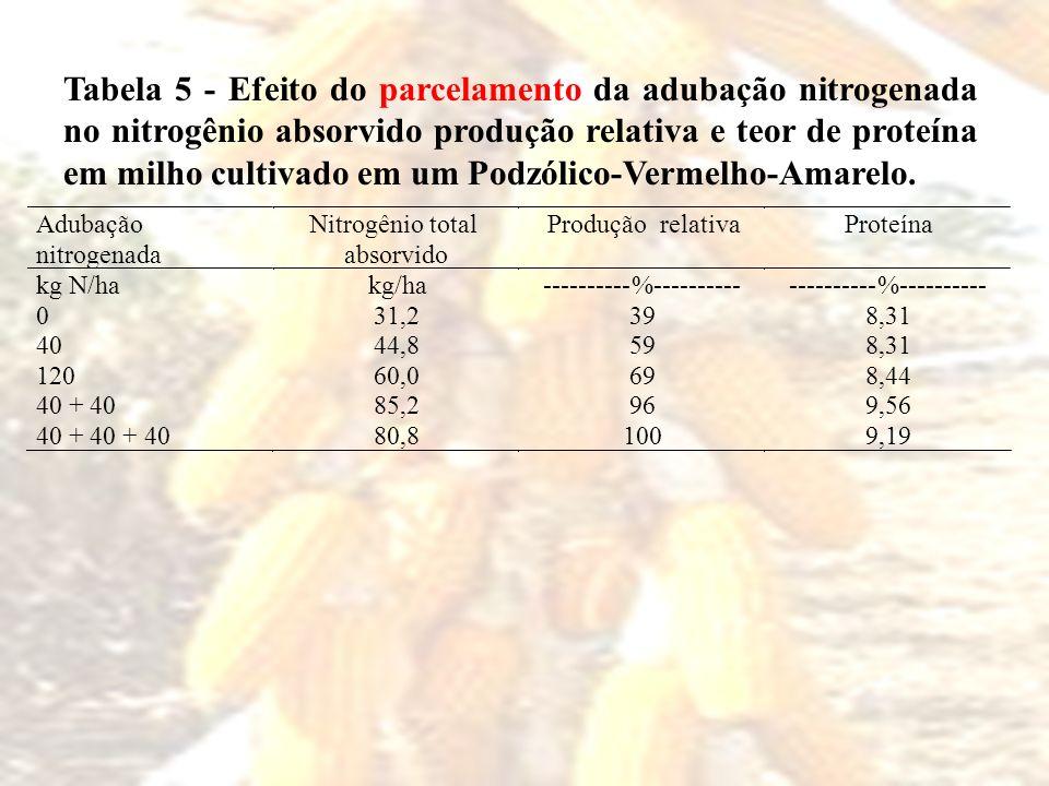 Tabela 5 - Efeito do parcelamento da adubação nitrogenada no nitrogênio absorvido produção relativa e teor de proteína em milho cultivado em um Podzól