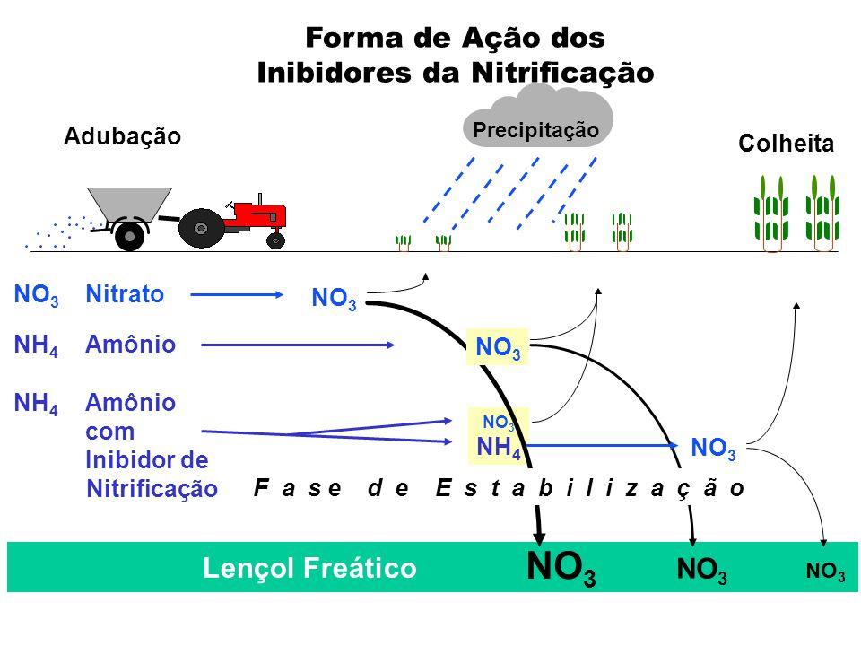 Lençol Freático NO 3 Adubação Colheita Precipitação NO 3 NH 4 NO 3 NH 4 Amônio com Inibidor de Nitrificação NO 3 Nitrato NO 3 F a s e d e E s t a b i