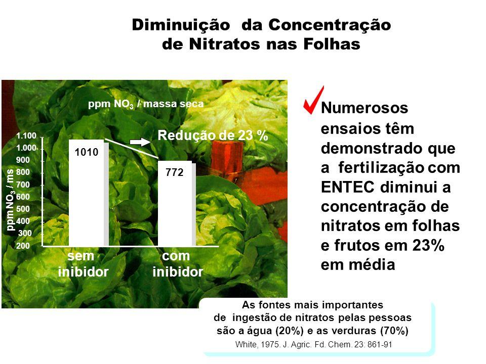 Diminuição da Concentração de Nitratos nas Folhas Numerosos ensaios têm demonstrado que a fertilização com ENTEC diminui a concentração de nitratos em