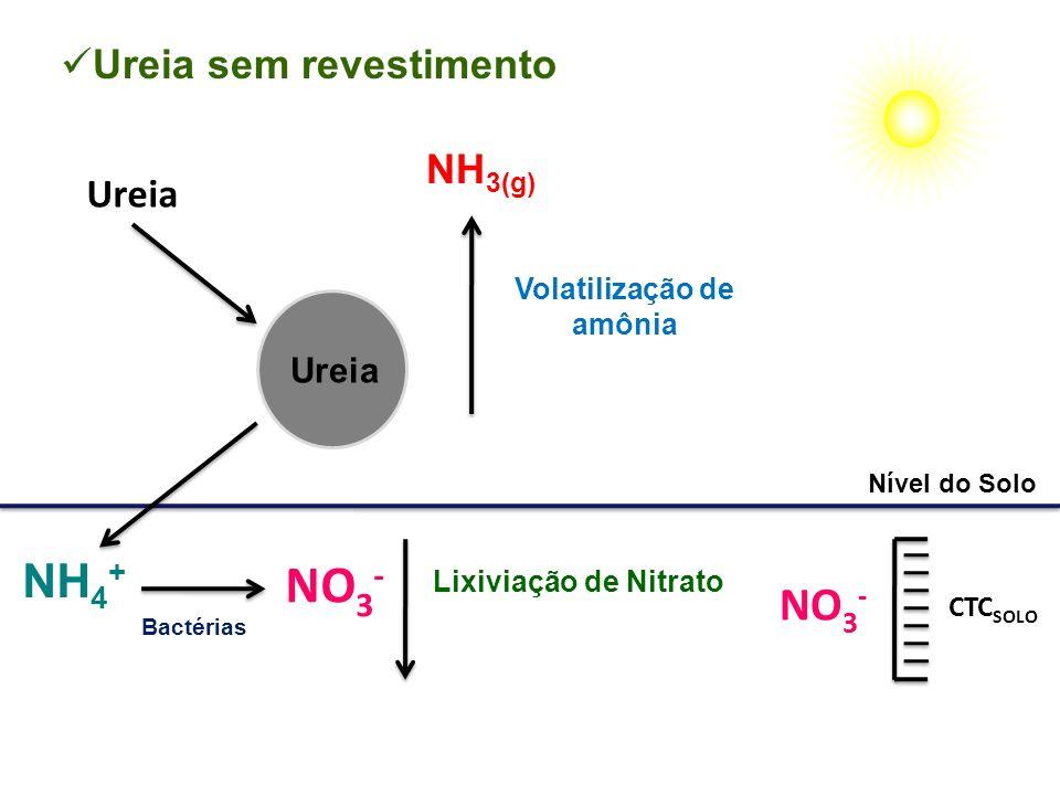 Volatilização de amônia Lixiviação de Nitrato Nível do Solo NH 3(g) NO 3 - Ureia sem revestimento NH 4 + Bactérias NO 3 - CTC SOLO Ureia